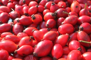 antioxidants-88126_1280