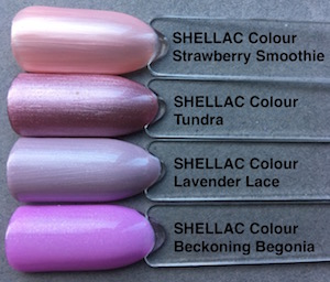 shellac_lavender_lace_feewallace
